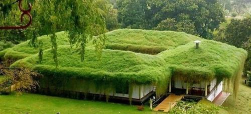Чем покрыть крышу садового и дачного домика