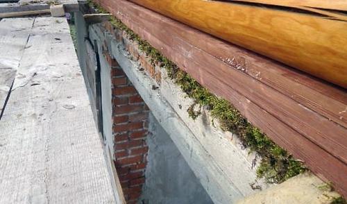 нижний венец мох